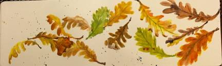 Falling Leaves For Sale!