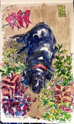 Honey Watercolor 5x8 $125