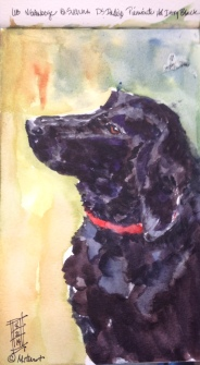 Ever Hopeful!Watercolor ( Archival print $50)
